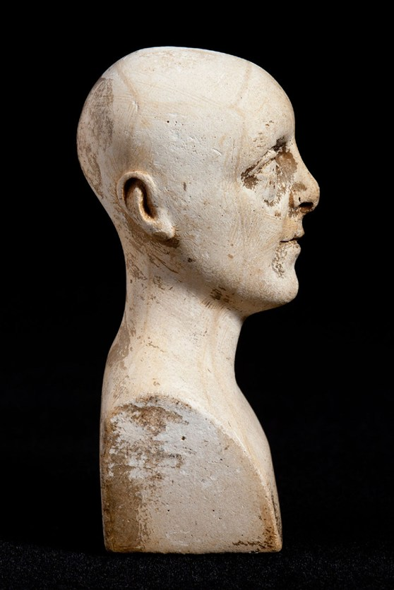 Side view of miniature phrenology bust