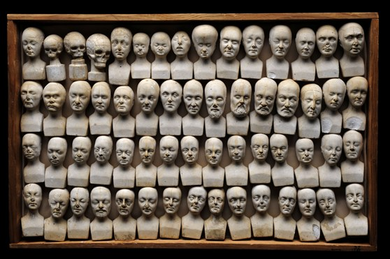 60 miniature phrenology busts displayed in wooden case