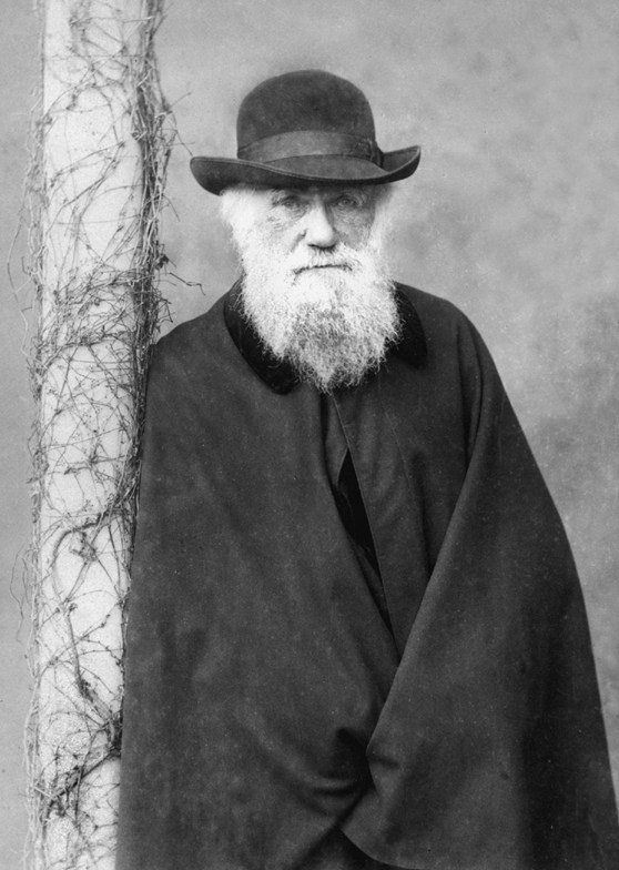 A black and white photograph of Charles Darwin in his later years. Pictured leaning against a tree, looking straight at camera