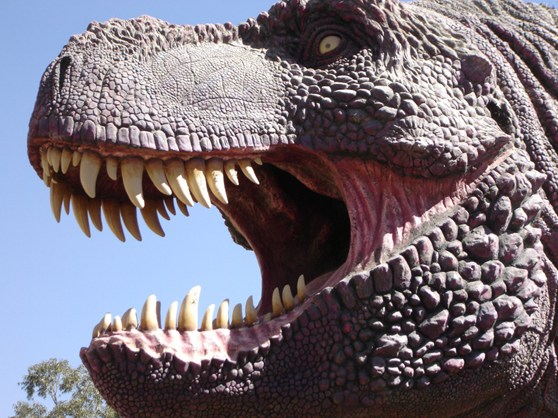 Large model of the head of Tyrannosaurus Rex