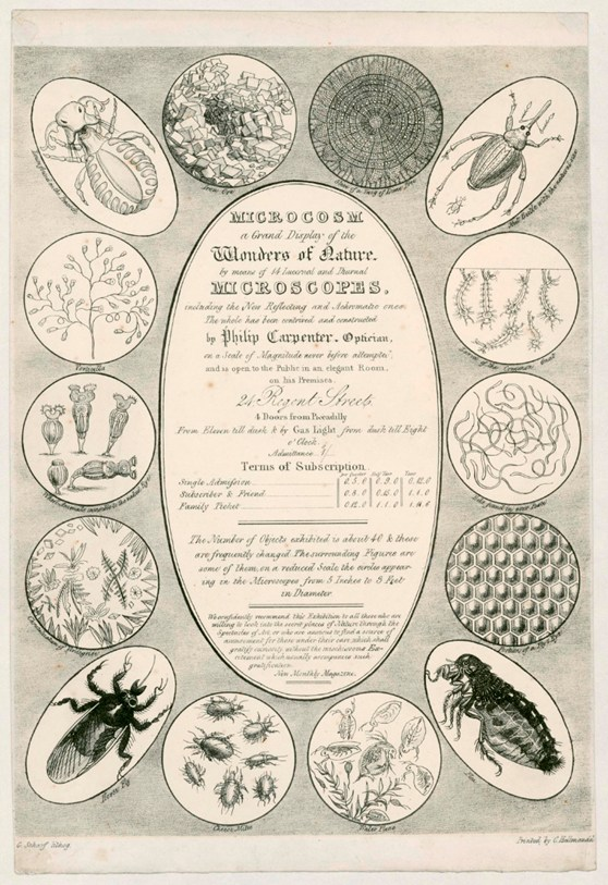A lithographic advertisement for Philip Carpenters Grand Microcosm from 1827