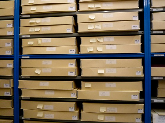 Colour photograph showing shelves of boxes containing photographs