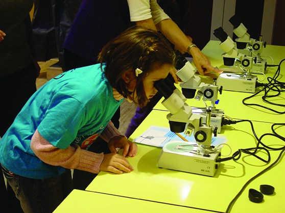 Colour photograph of a young girl using a microscope