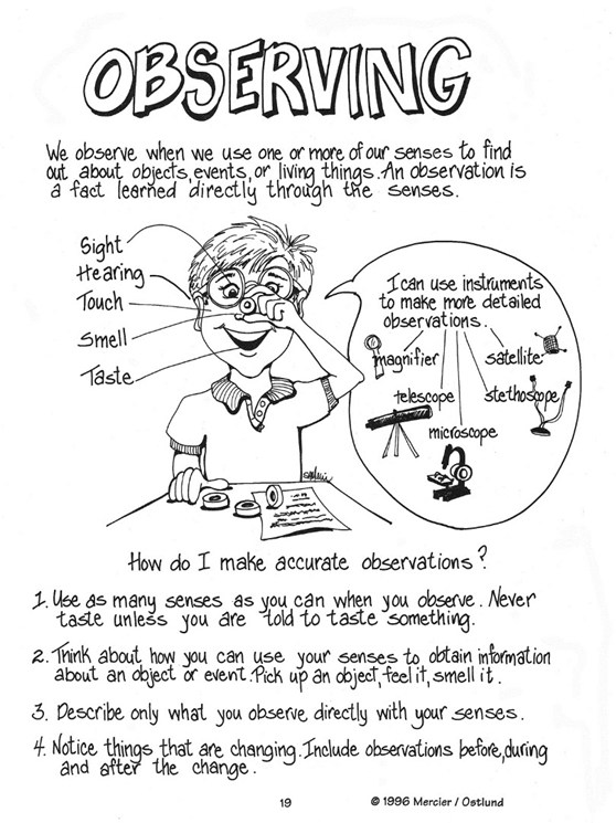 Example of a worksheet for school children entitled Observing