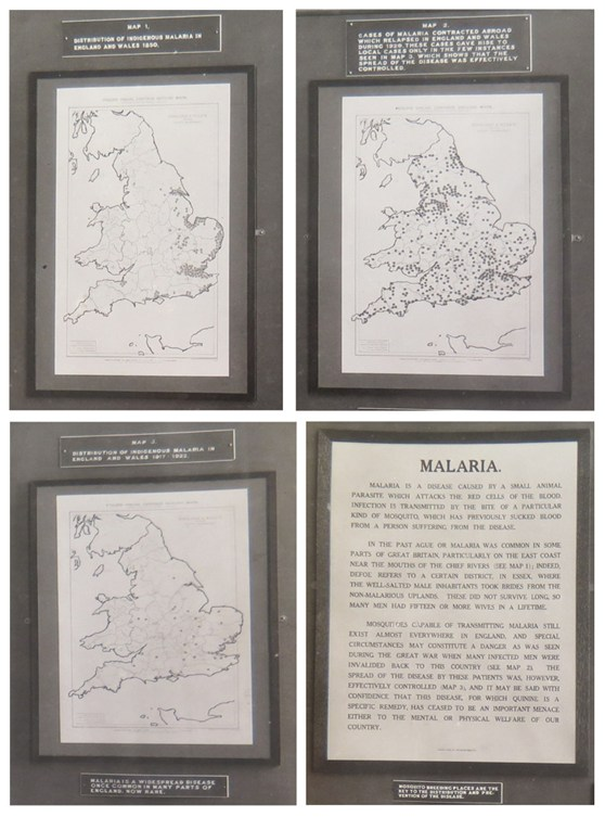 Composition of different maps showing malarial incidence in England