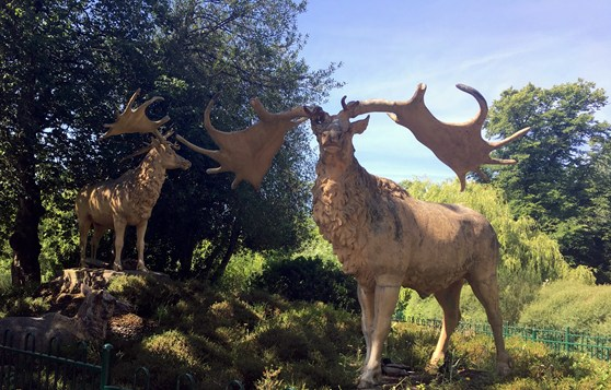 Colour photograph of two concrete Great Irish Elk models from the nineteenth century