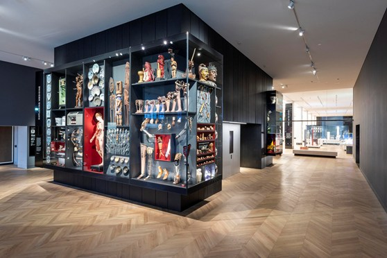 Colour photograph of a gallery view of Exploring Wellcome