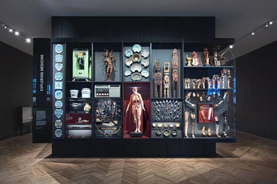Colour photograph of a medical objects gallery case